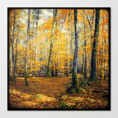 Yellow Trees Canvas Print