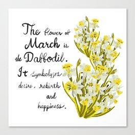 Daffodil - Birth Month Flower for March Canvas Print