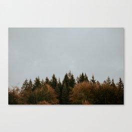 Wild Mountain Thyme Canvas Print