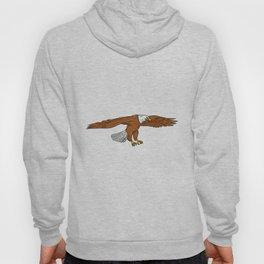 Bald Eagle Swooping Drawing Hoody