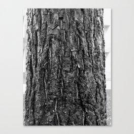Woodwork Canvas Print