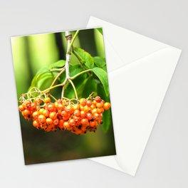 Rowan Berries Stationery Cards
