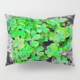 Clover Cluster Pillow Sham
