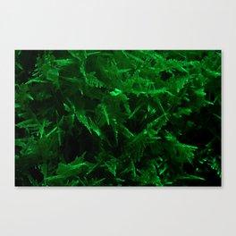 Green trees pt.2 Canvas Print