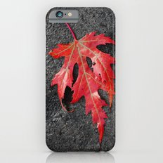 red maple leaf Slim Case iPhone 6s
