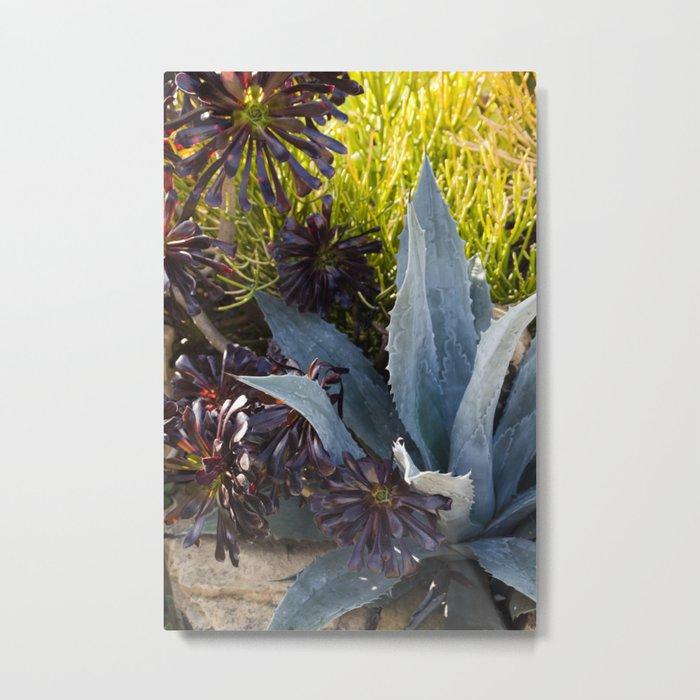 Agave in Blue  |  Botanical Metal Print