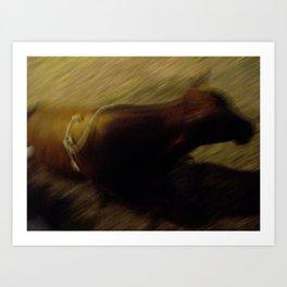 The bull Art Print