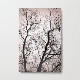 Branches in Winter Metal Print
