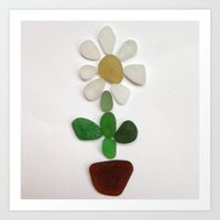 Beach Glass Daisy Art Print