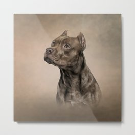 Funny American Staffordshire Terrier Metal Print
