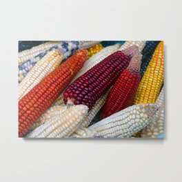 Colorful Corn Metal Print