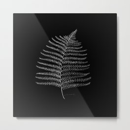New Zealand Fern Leaf Metal Print