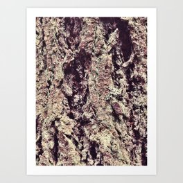 Tree Bark 2.0 Art Print