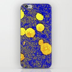 Gold and Blue Harmony iPhone & iPod Skin