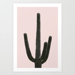 Cactus desert plant wall art Art Print