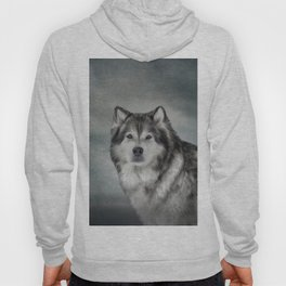 Drawing Dog Alaskan Malamute Hoody