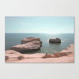 BEACH DAY 42 Canvas Print