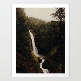 verdant falls Art Print