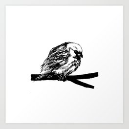 Bird Lover 2 Art Print