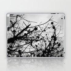 Spooky Tree Silhouette Laptop & iPad Skin