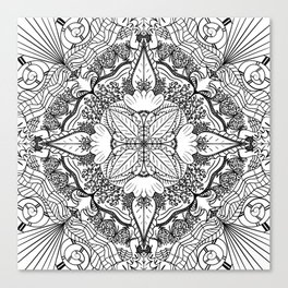 Nature in Symmetry Canvas Print