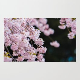 Japanese Cherry Blossoms Rug