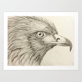 Bird drawing Art Print