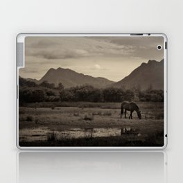 Tranquil Laptop & iPad Skin