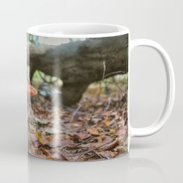 A Faerie's World Coffee Mug