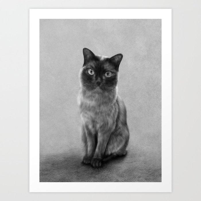 Gizmo Art Print