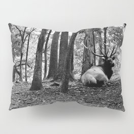 Elk Laying Down in Woods Pillow Sham