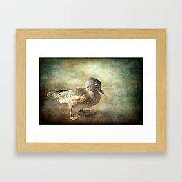 Lovely Lady - Wood Duck Framed Art Print