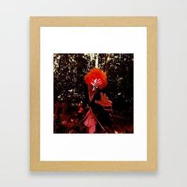 Hollofied Ichigo Kurosaki Cosplay Framed Art Print