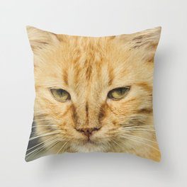 Antonieta is angry pt2 Throw Pillow