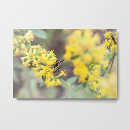 busy bee.. i mean wasp Metal Print