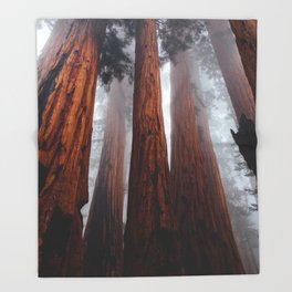 Tall Redwood Trees Throw Blanket