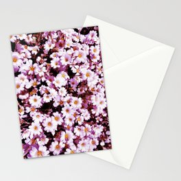 Pretty Little Daisy Stationery Cards