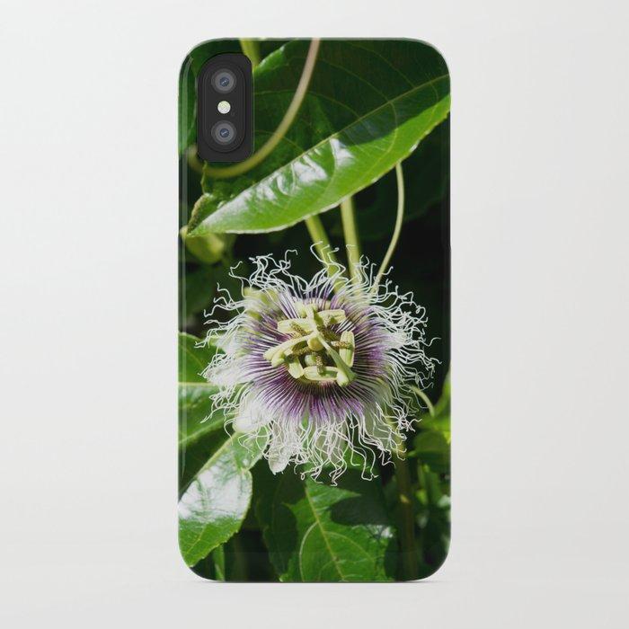 Passiflora edulis (Passion flower) iPhone Case