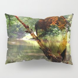 Robin By The River By Annie Zeno Pillow Sham
