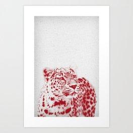 Leopard 01 Art Print