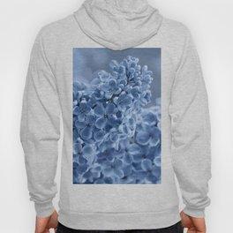 Lilac blue 281 Hoody