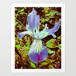 IRIS TENAX 10X Art Print