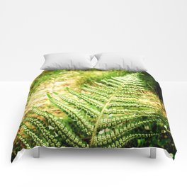 Green Fern Comforters