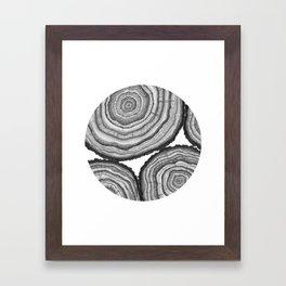 Tree Rings- Circle Framed Art Print