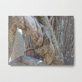 tree knot Metal Print