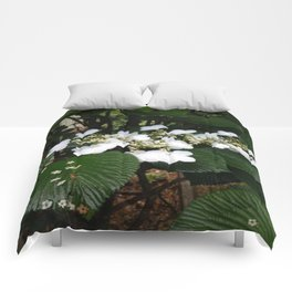 Natural Delight Comforters