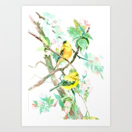 American Goldfinch and Apple Blossom Art Print