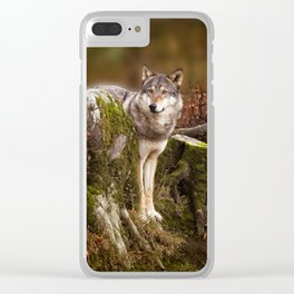 Grey Wolf Clear iPhone Case
