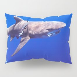 Fish Are Friends, Not Food Pillow Sham