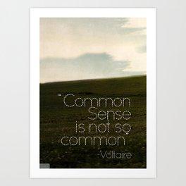 Common Sense Art Print